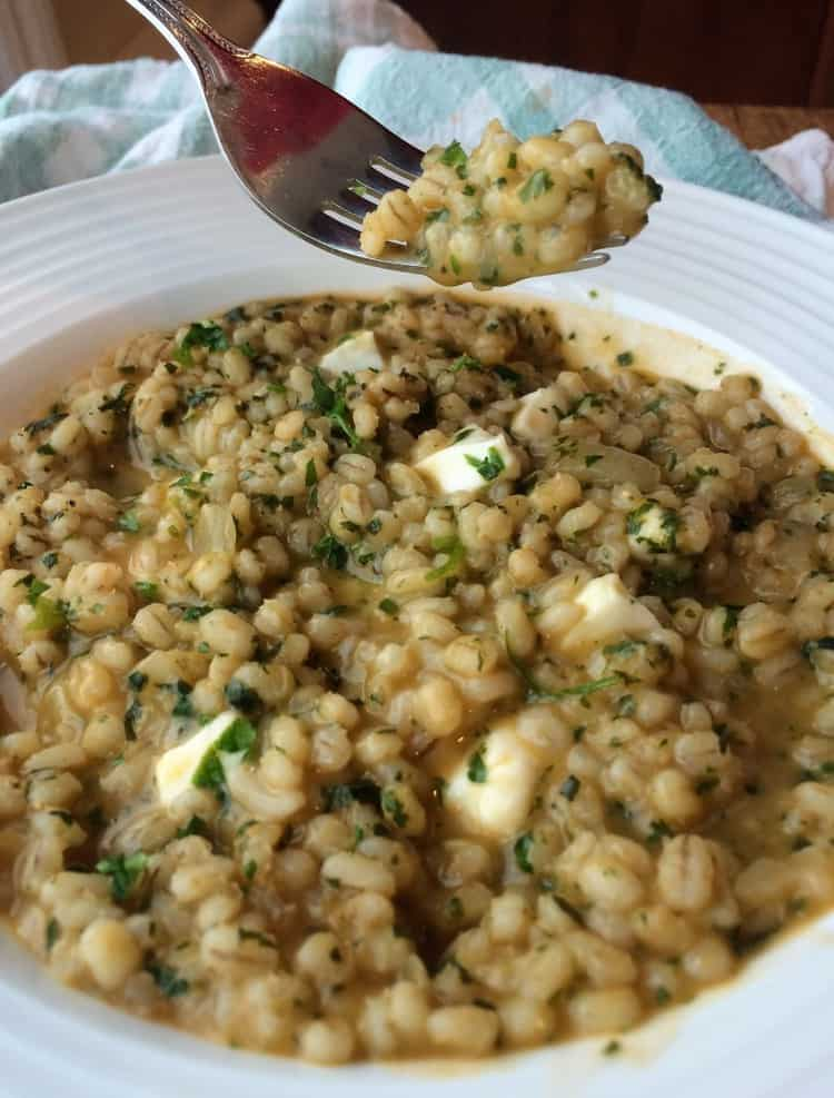 Pesto and Bocconcini Barley Risotto in a bowl with a forkful