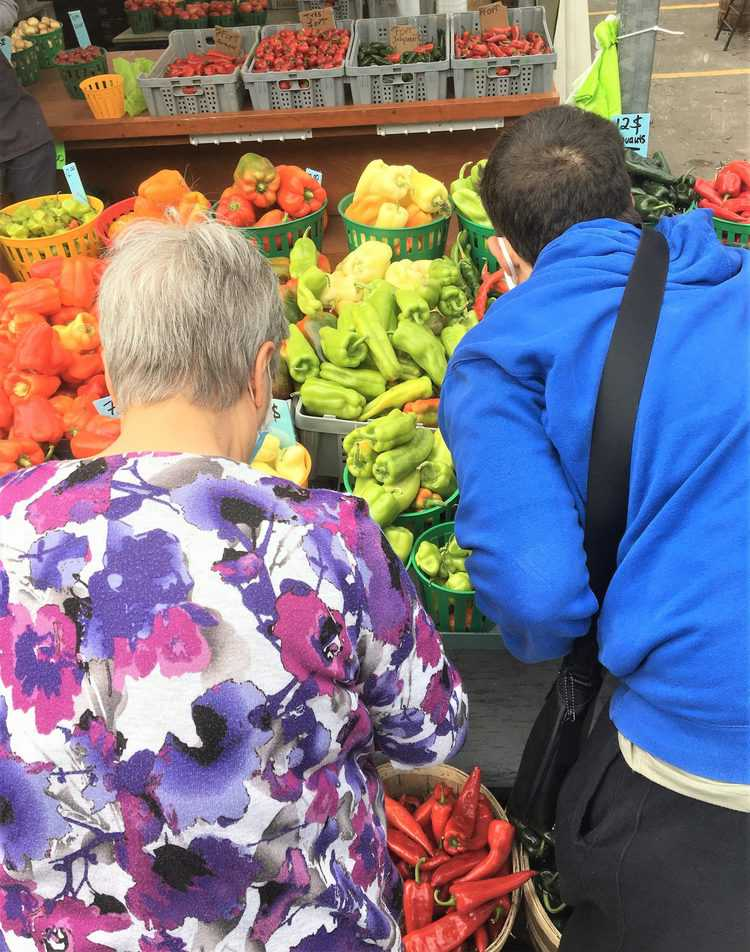 nonna and grandson at market choosing peppers