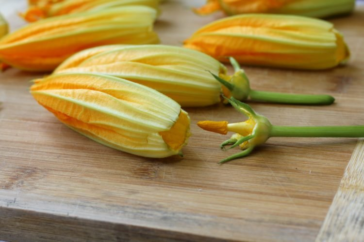 zucchini blossoms with stamen removed on wood board